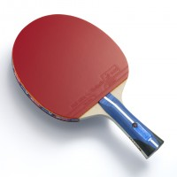 Butterfly Harimoto Tomokazu 2000 Racket