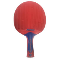 Double Fish Outdoor Table Tennis Bat