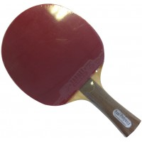 Sanwei Allround racket with T88 rubbers