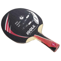 Joola Wing Passion Fast Blade
