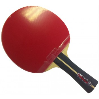 Tibhar Pinkewich All Round+  Table Tennis Bat with Grip-S Europe rubbers