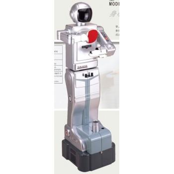 TTW TAIDE 1 Robot