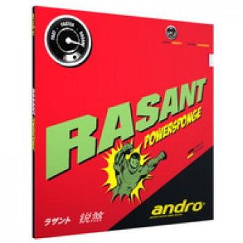 Andro Rasant Powersponge