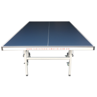 TTW Pro Spin Table Tennis Table