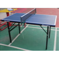 TTW Mini 12mm Table Tennis Table