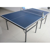TTW  Mod Table Tennis Table