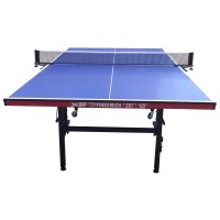"TTW Pinkewich  ""287"" 19mm Top ""Table Tennis Table"